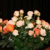 Wunderschöne Rosen dekorieren die Bühne im Saal des Pfarreizentrums